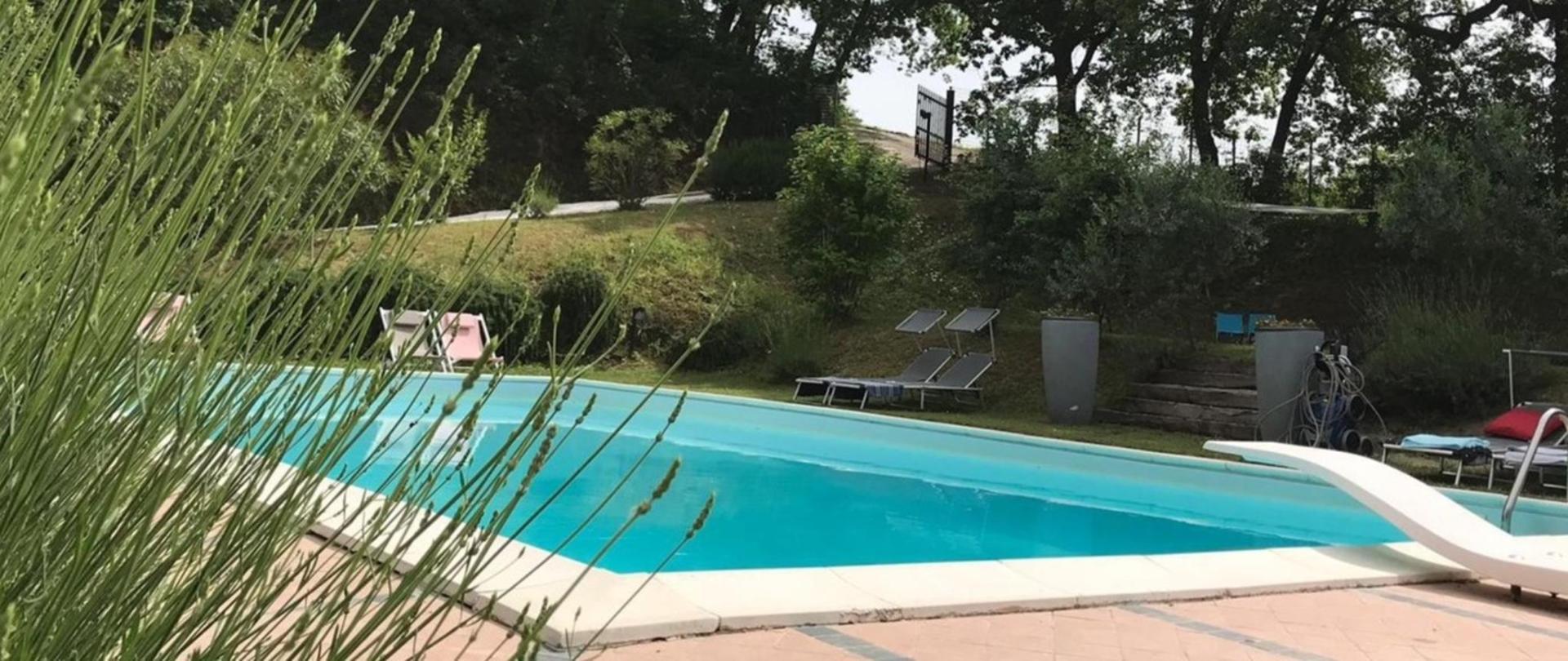 11 swimming pool 1.jpg
