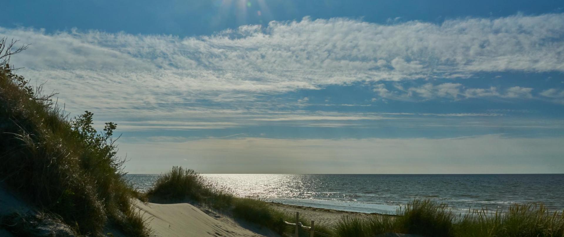 beach-3552176.jpg