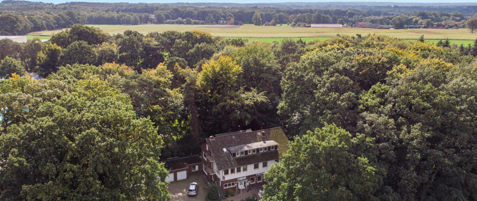 hopenerwald-31.jpg