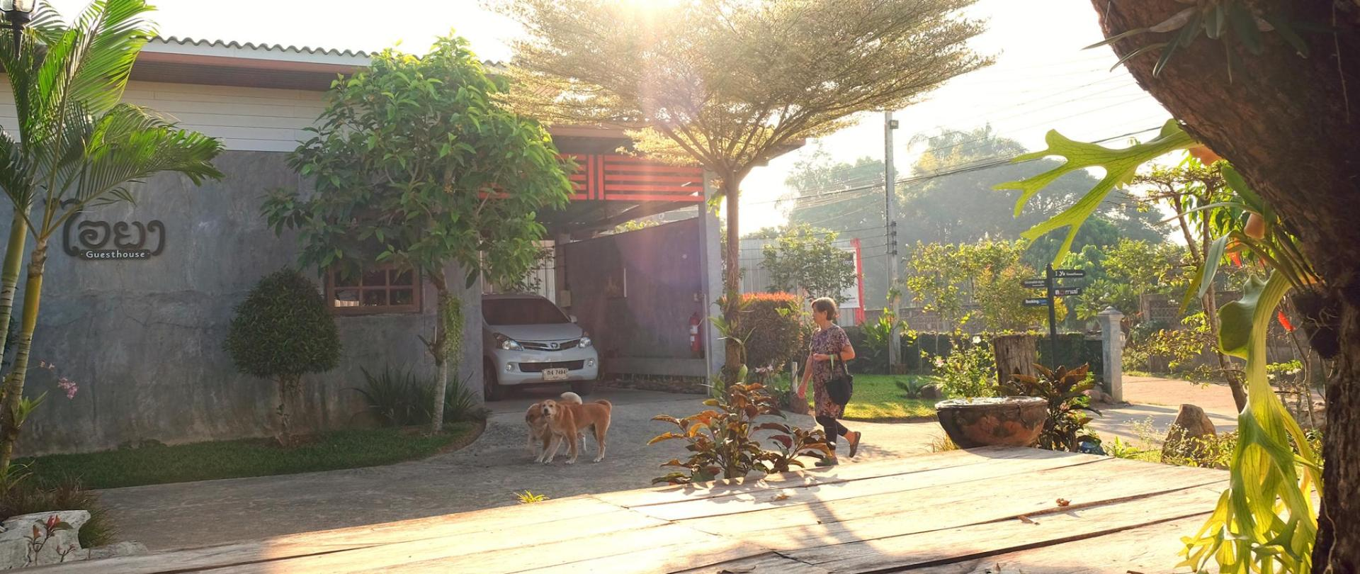 Owner-Pets-Garden-logo-facade-entrance-secured parking-I-Ya-Guesthouse-Phayao.jpg