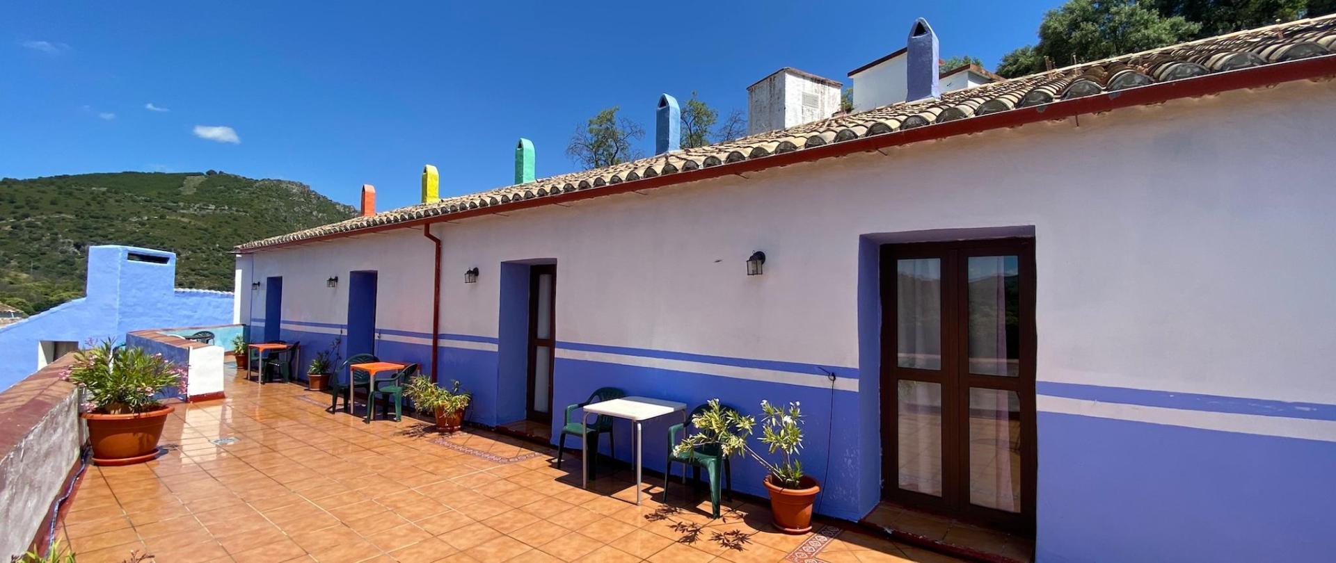 IMG_0672-terrace-2000.jpg