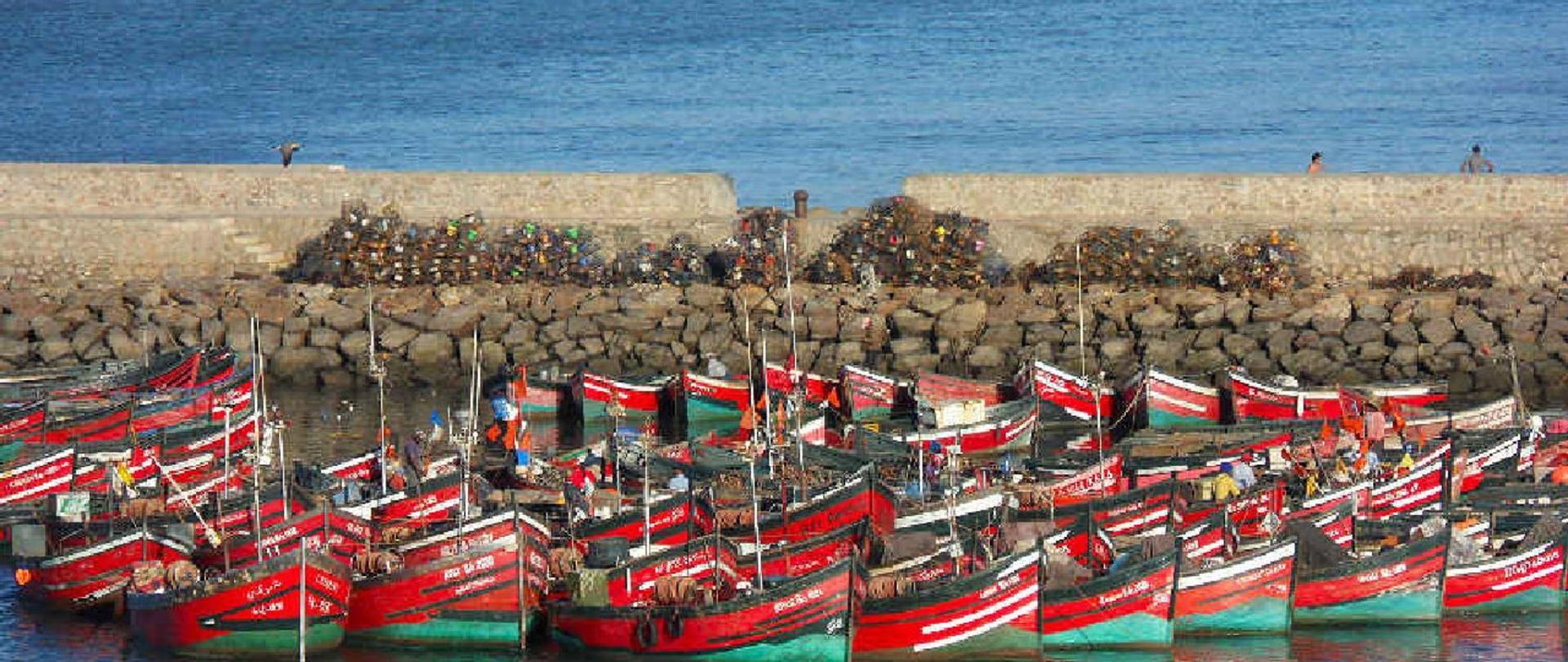 barques8.jpg