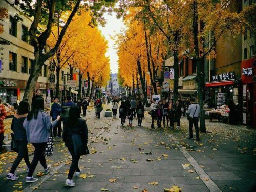 autumn-1511737_960_720.jpg