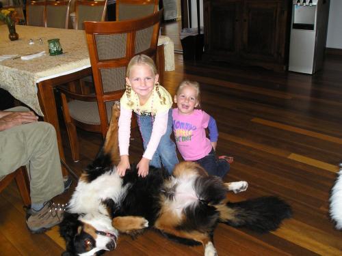 Guests & Pets