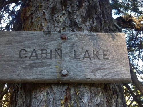 Cabin Lakes & Four Lakes Loop Trail