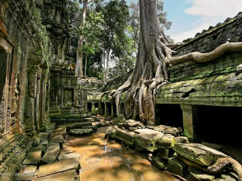 À propos de Siem Reap