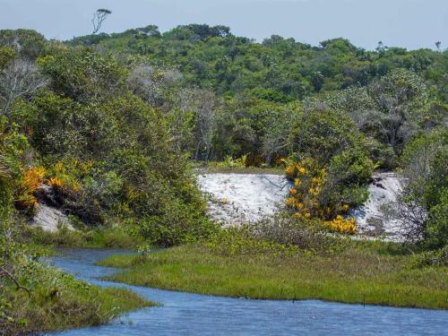 Caiaque no Rio do Brasil