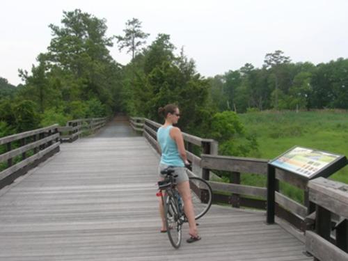 Rehoboth Beach Hiking & Biking Trails