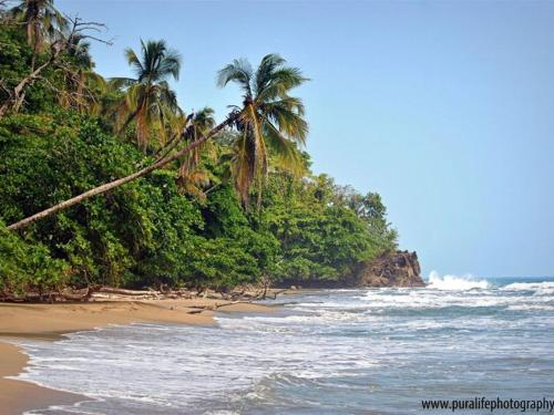 The Exciting Caribbean Coast of Costa Rica