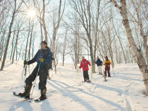 Snowshoes & Cross country Ski
