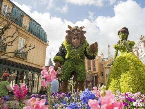 Disney Destination News
