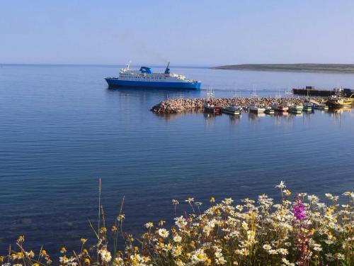 1e4a7250_hdr_labrador-ferry-1.jpeg