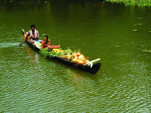 kerala_backwaters_-_kerala_tourism-1.jpg