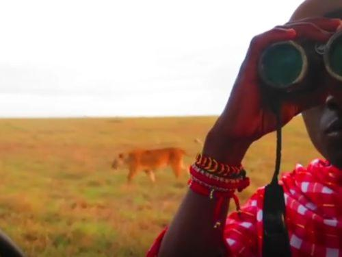 Saruni Guests' Videos