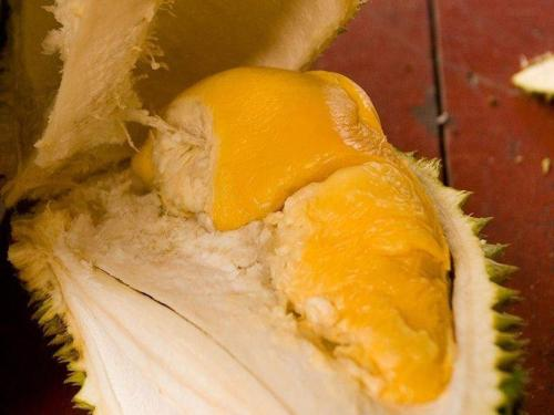durian5.jpg
