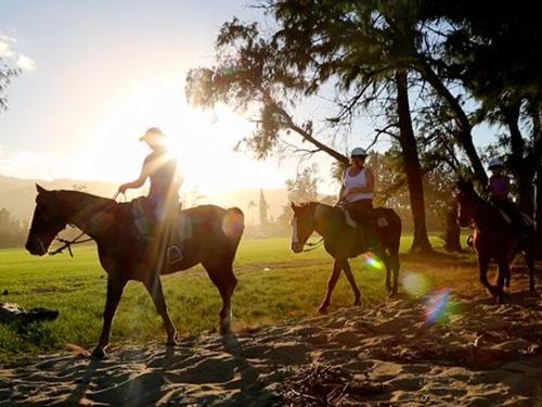 Polo & Trail Rides