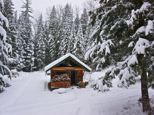 Dec. 21 - 7 photos that show Winter is Officially here