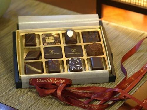 CHOCOLATE SPRINGS