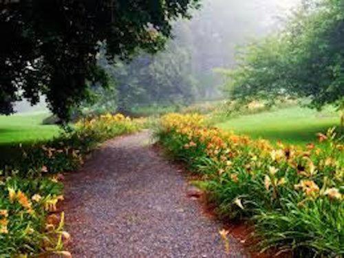 Spring in the Berkshires