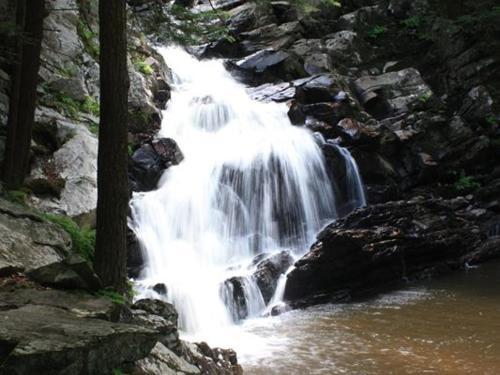 Berkshire Hiking Trails- Wahconah Falls