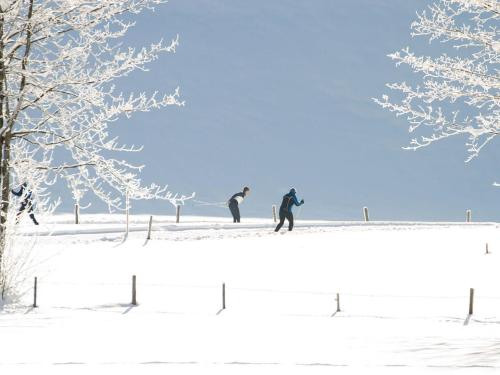 Sport und Vital im Winter