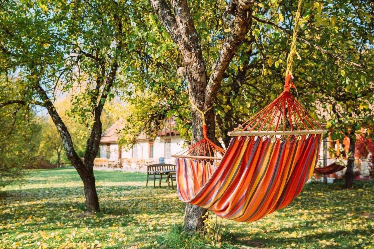 hammocks in Kārlamuiža Garden