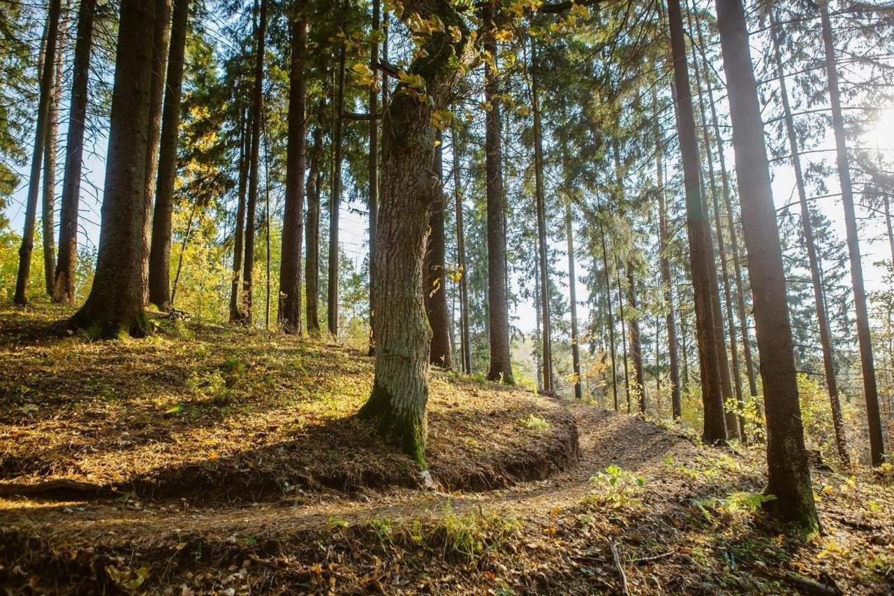 Wanderweg in Karlamuiza