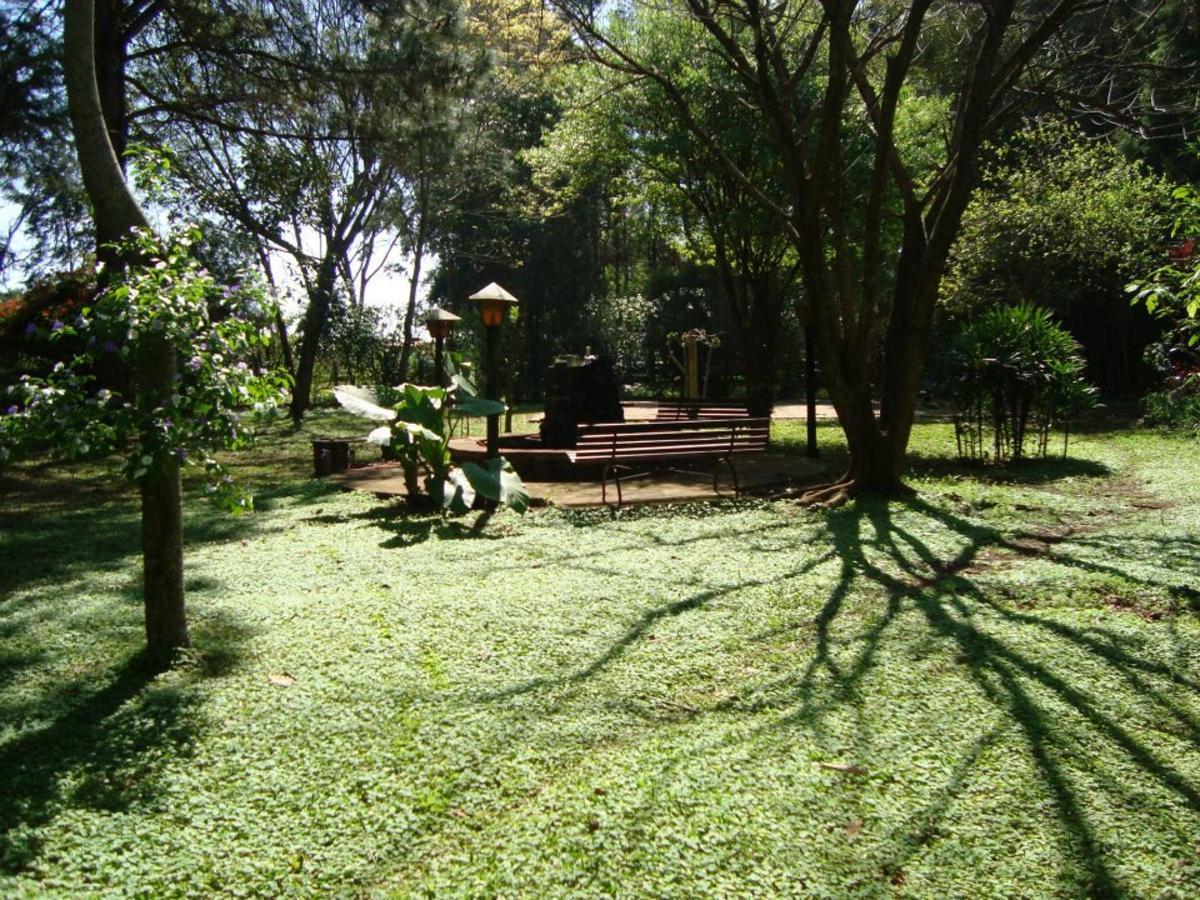 Jardin13