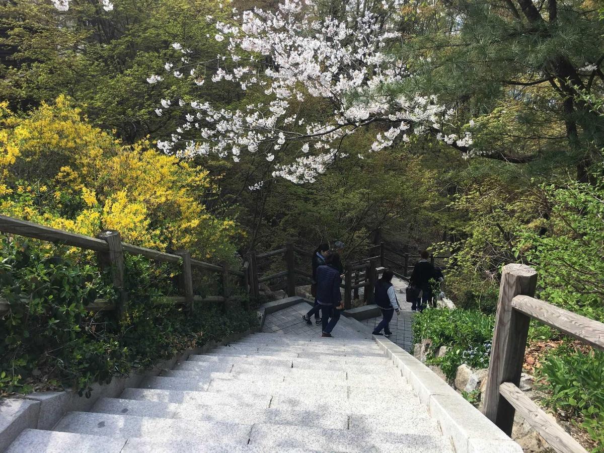 Namsan Park 4.jpg