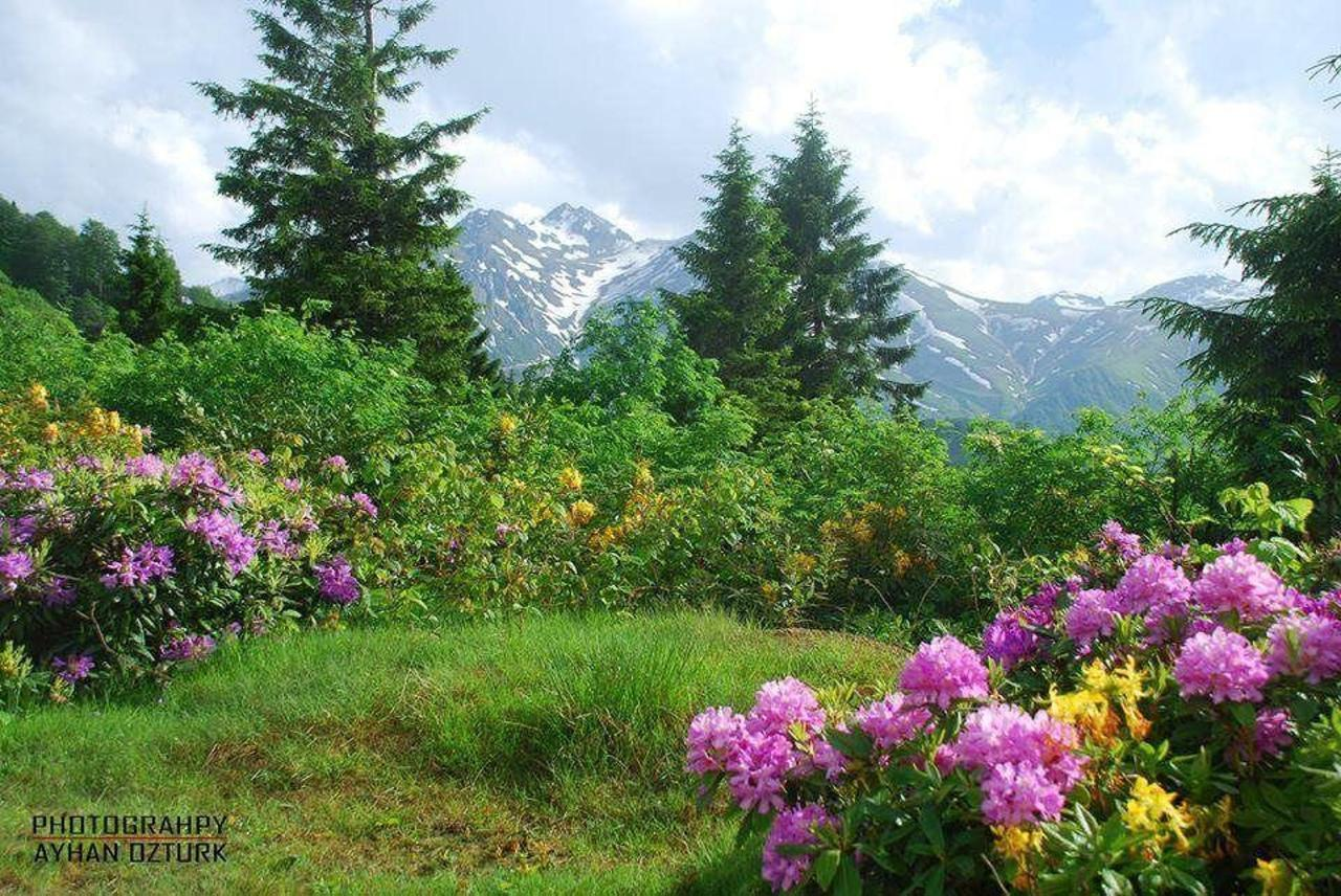 Utsikt over de høye daler i Kamilet-dalen
