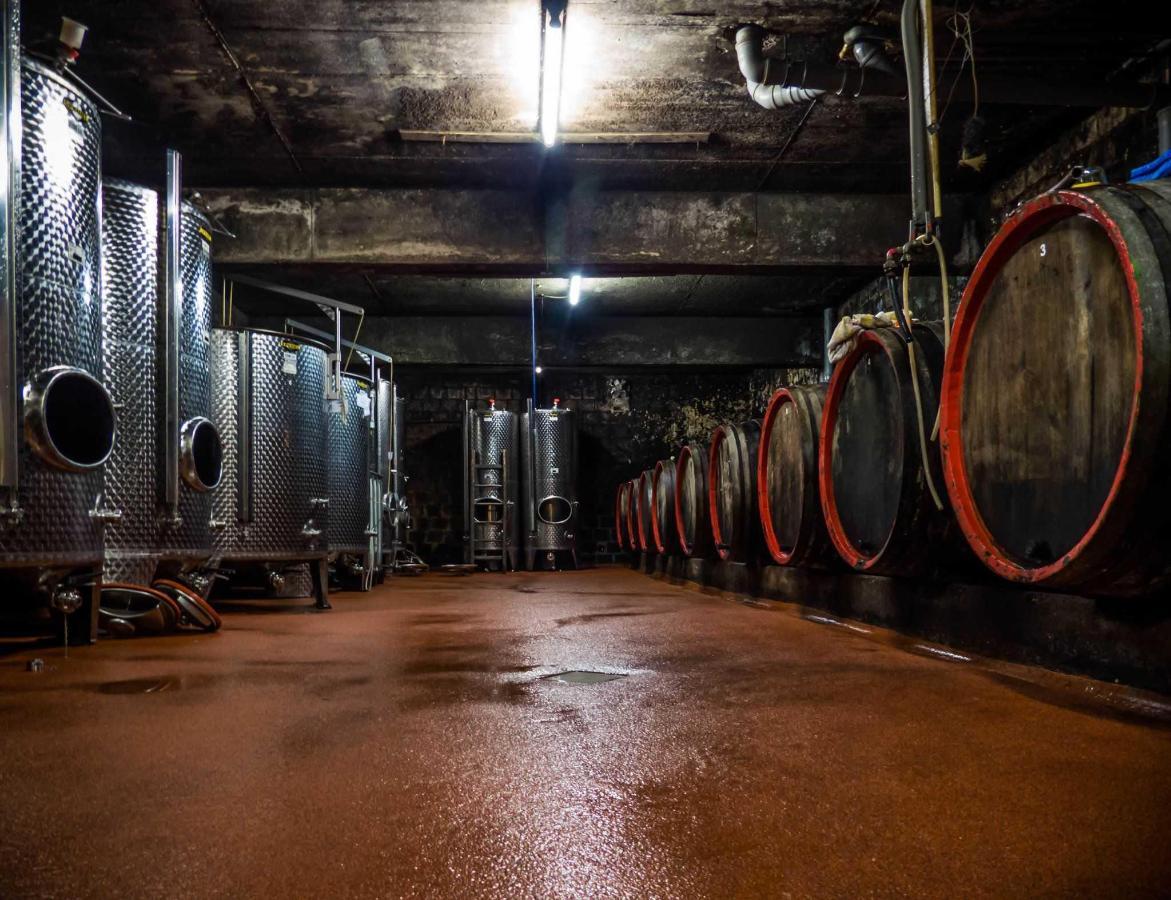 Weinprobe im Weinkeller.jpg
