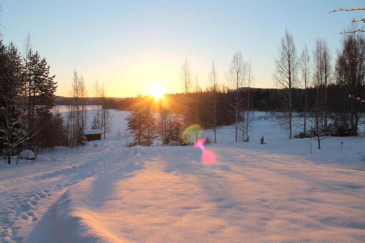 Tammikuun aamu-aurinko