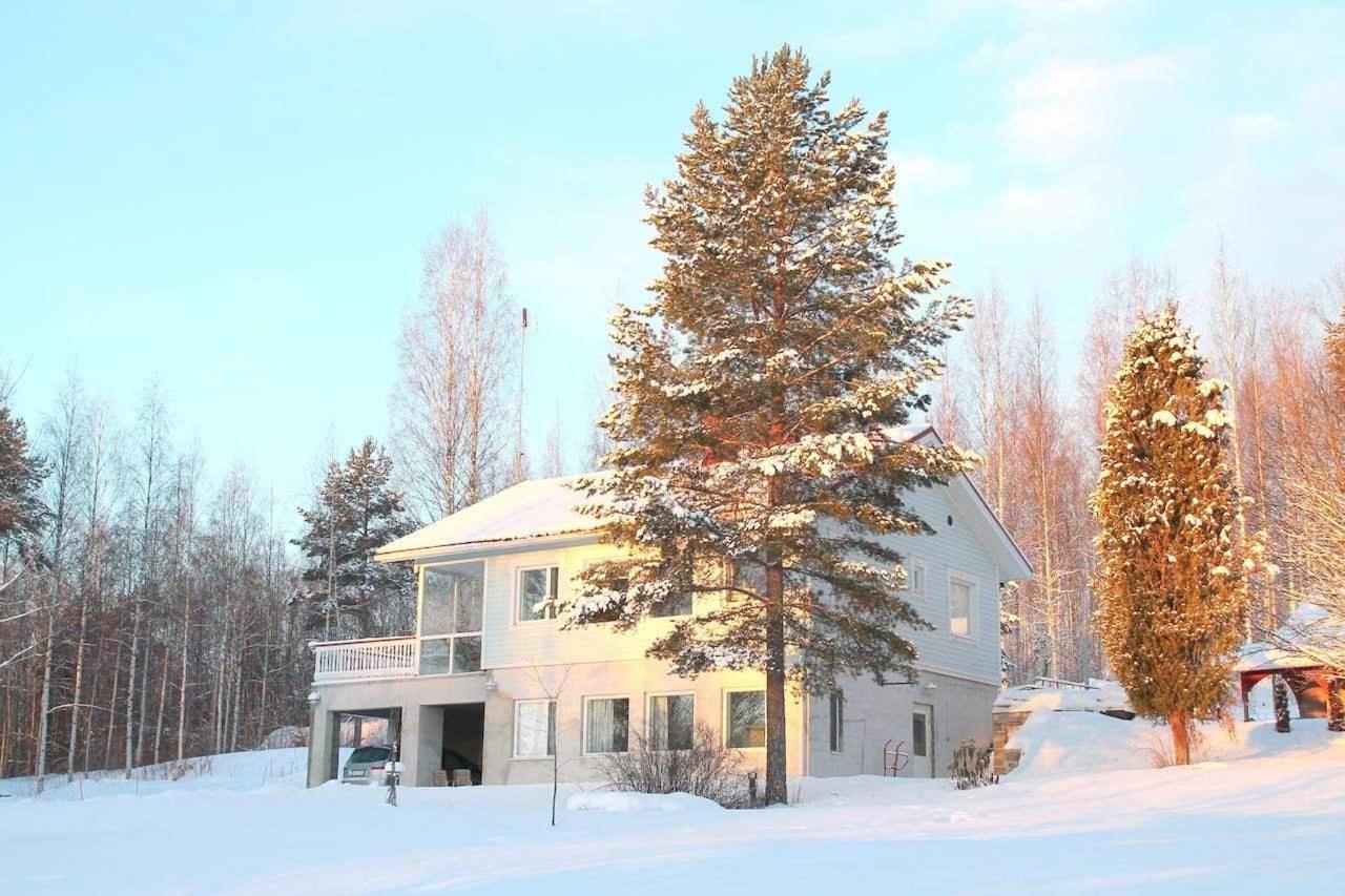 Talvi Willa Rautalahti
