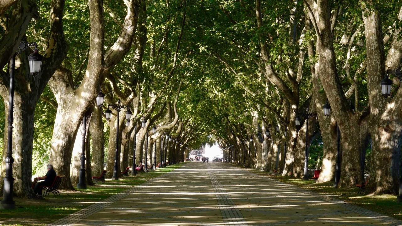 Der Pilgerweg zwischen Ponte de Lima und Rubiães