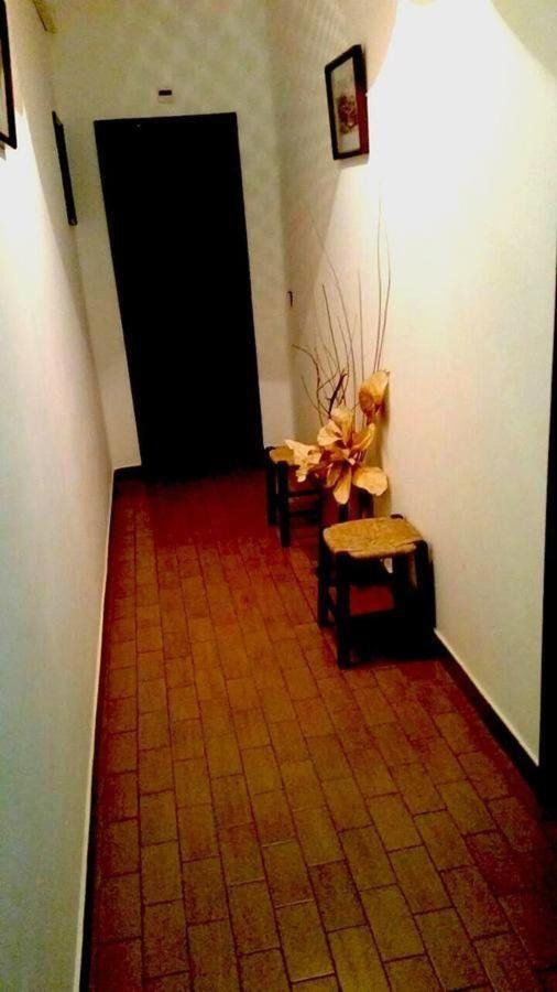 Zimmer10