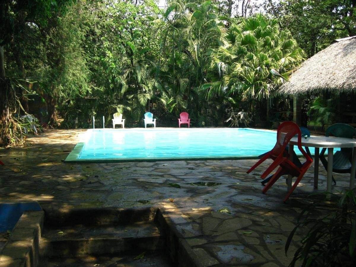 Property3  Observando el atardecer en la piscina.