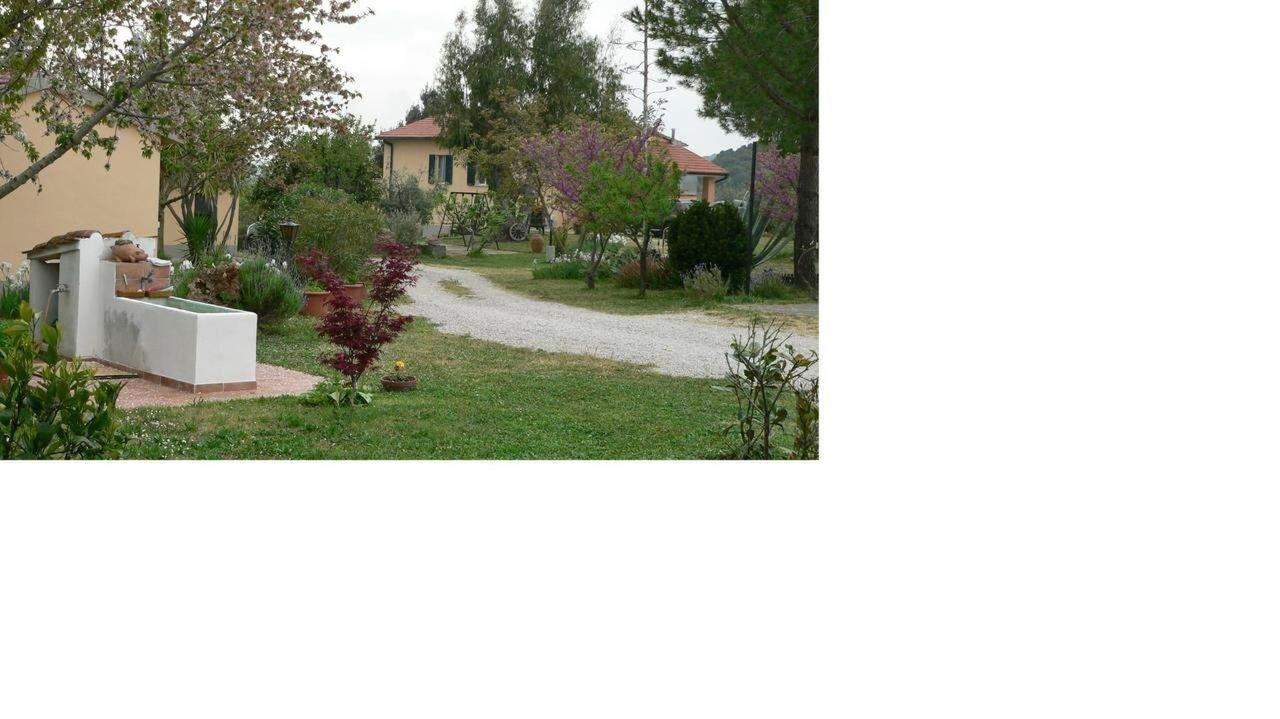 Property155