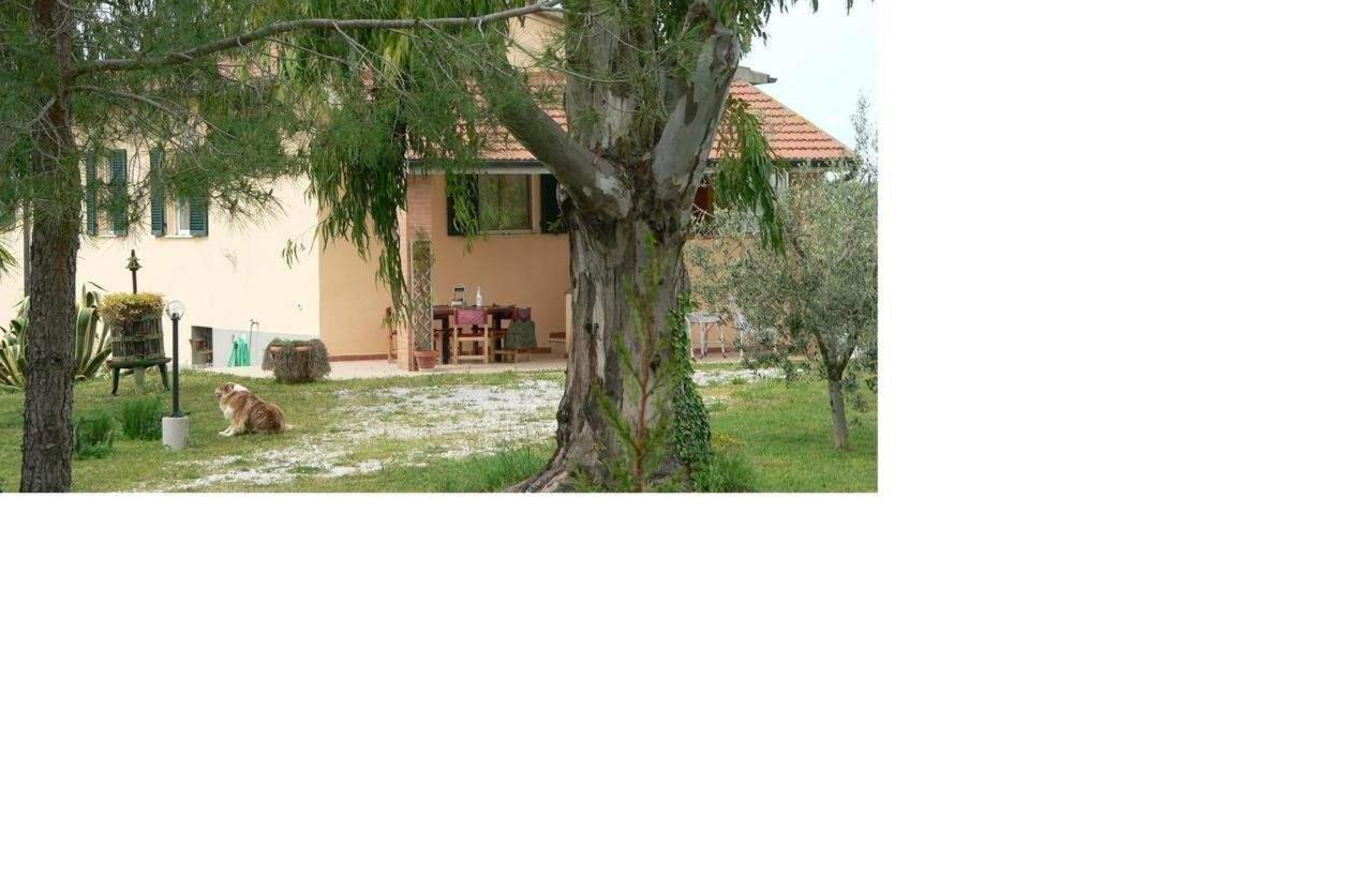 Property163
