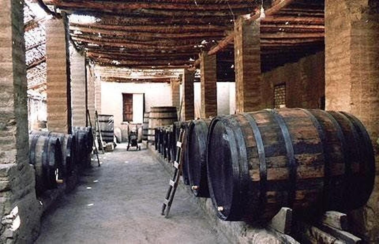 Bodegas - Preparación de Piscos y Vinos