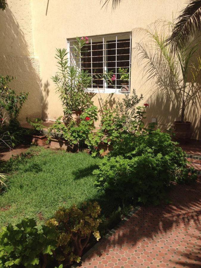 Jardin à l'entrée