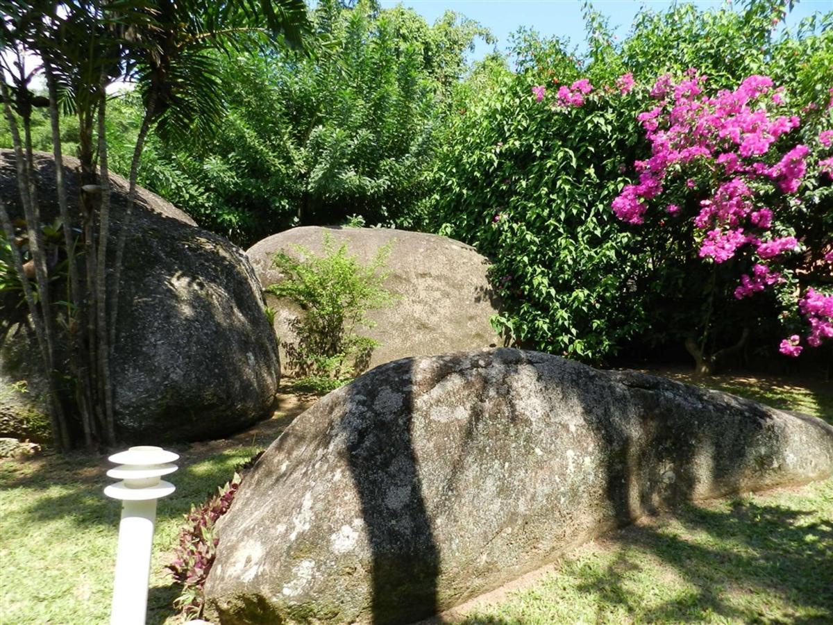 Piedras y jardines del pueblo (10) .jpg