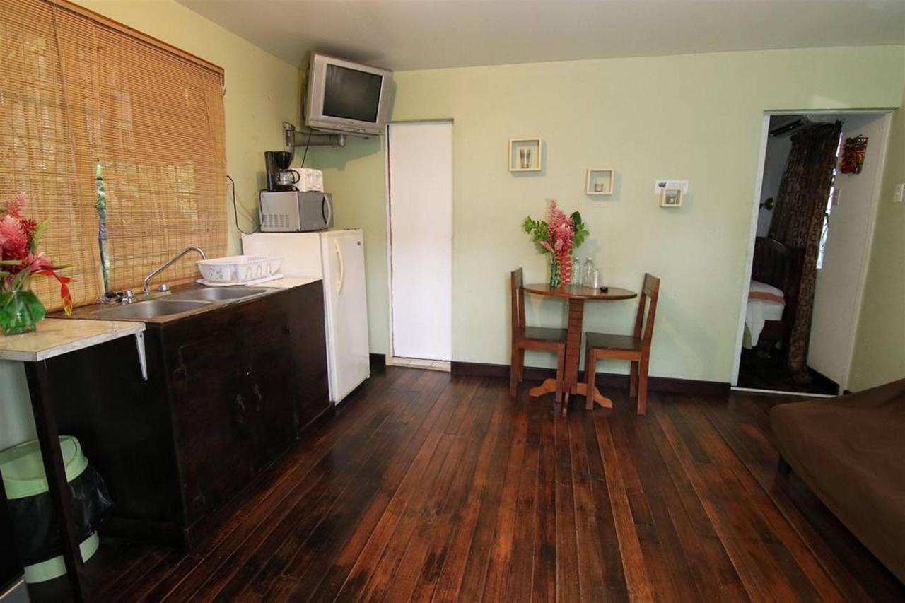 Alojamientos Rain Forest Heaven cabana kitchen.JPG