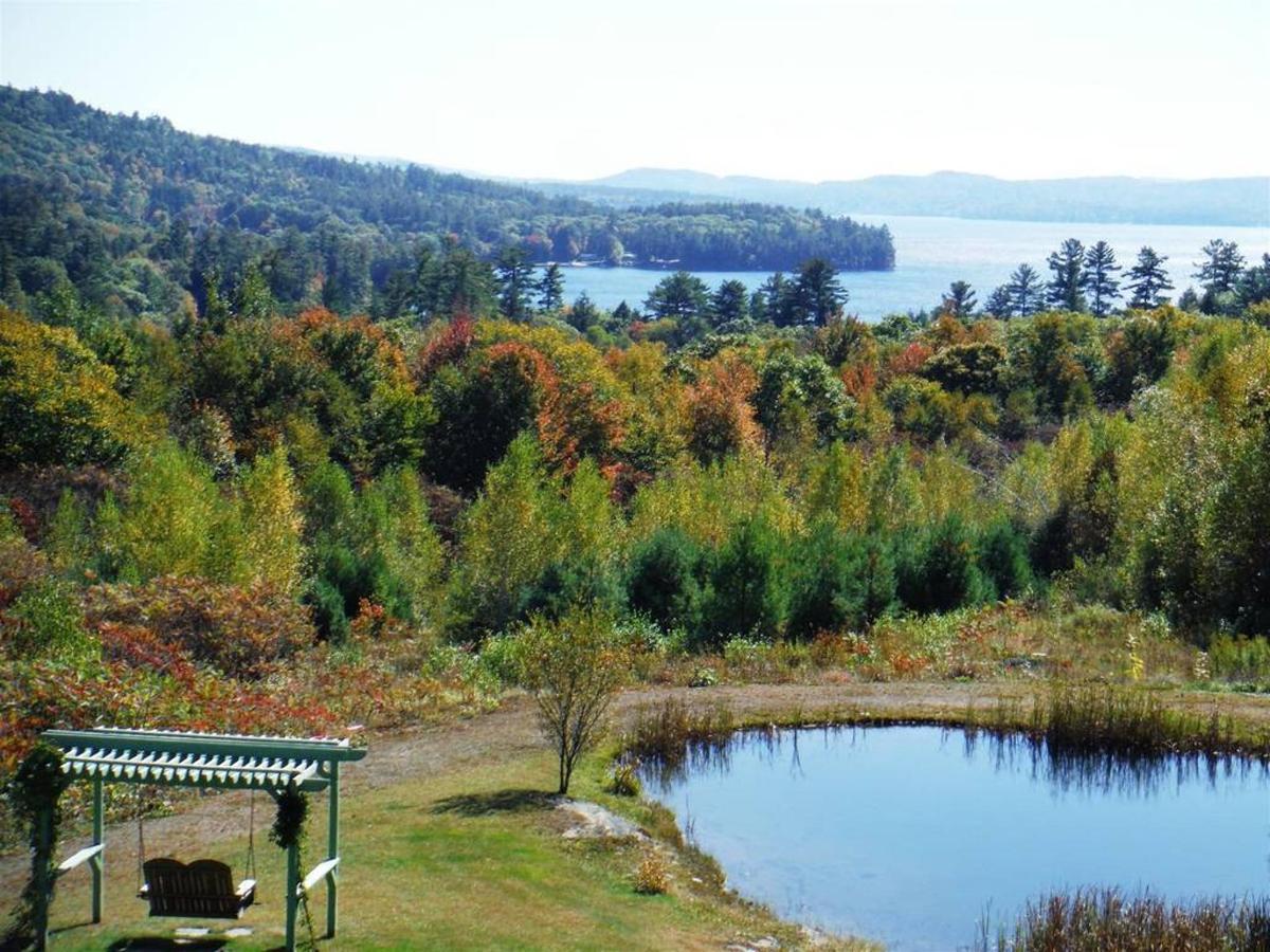 Foliage Views Coppertoppe.jpg