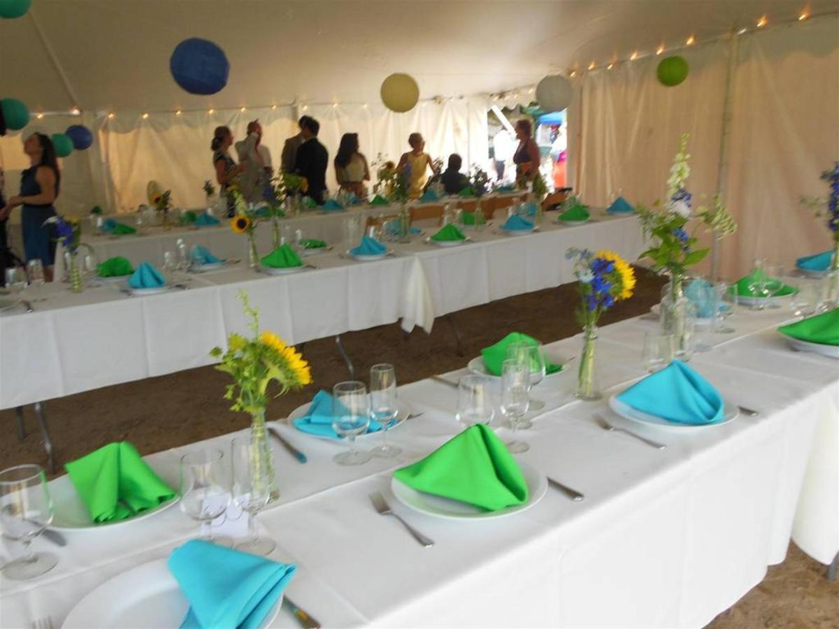 Outdoor reception at Coppertoppe.jpg