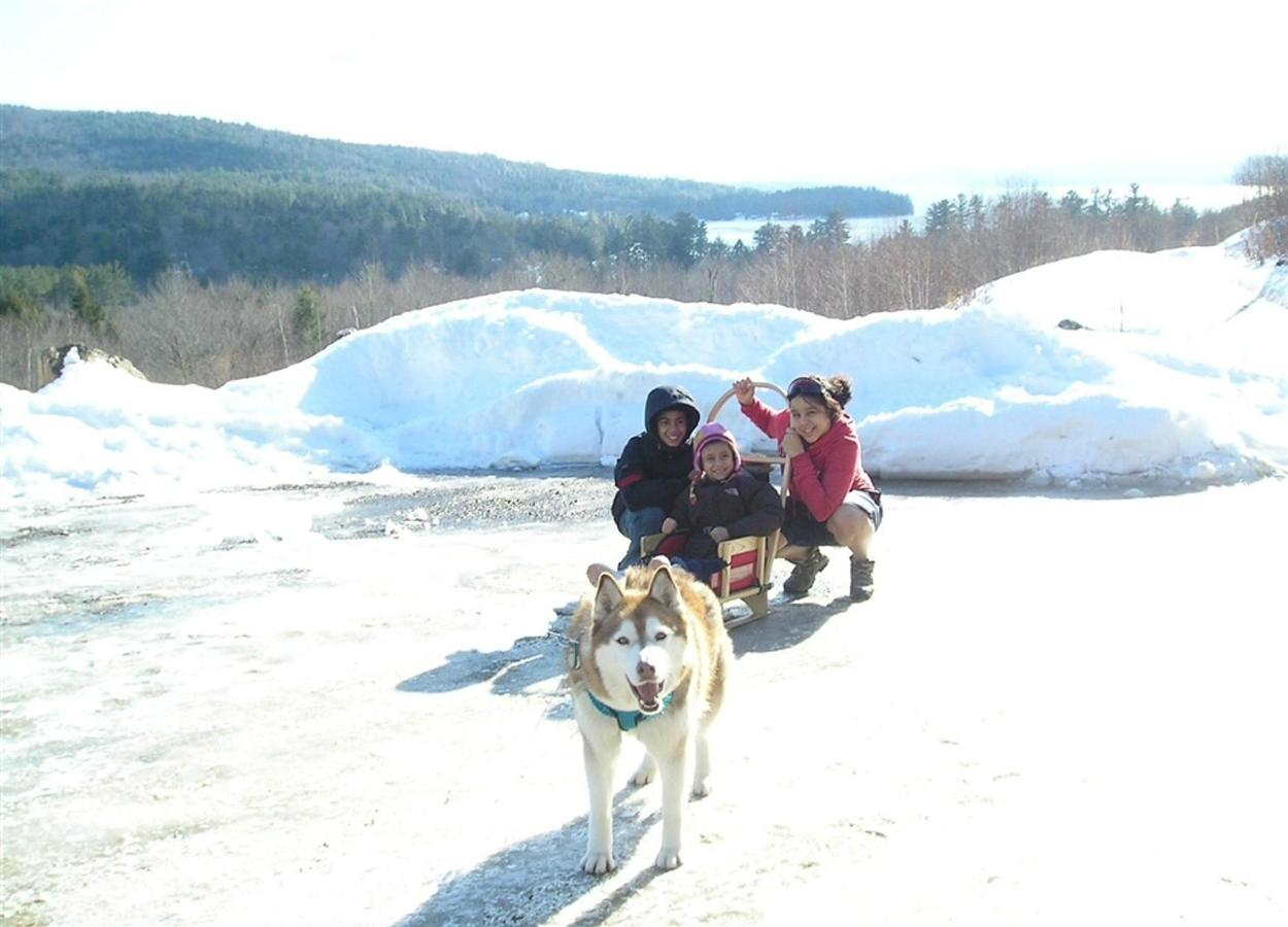 Children with sled dog at Coppertoppe.jpg