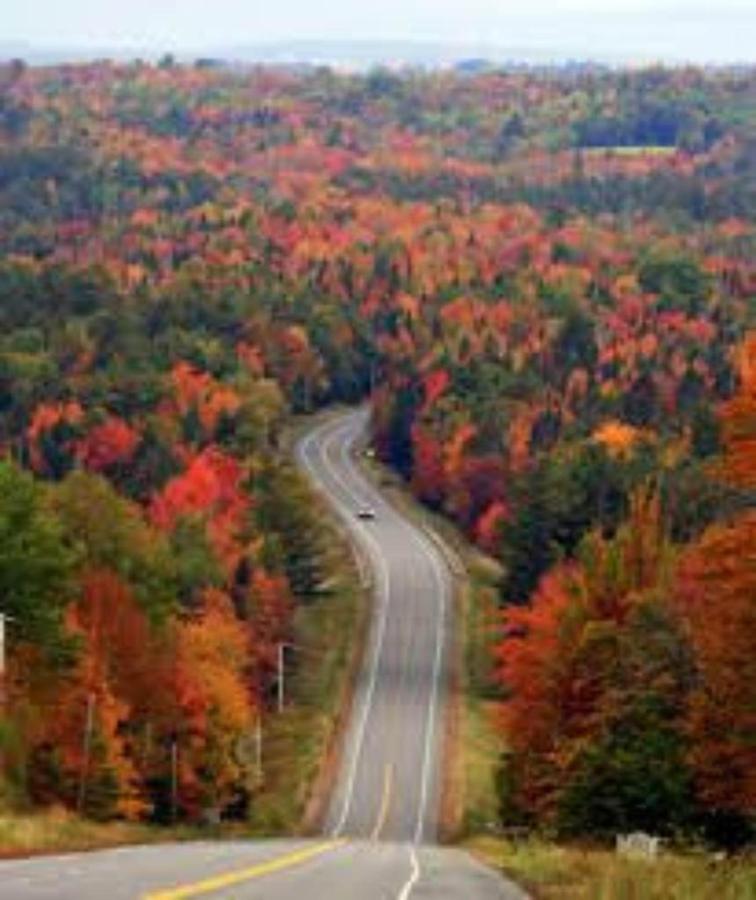 Fall Road Trips.jpg