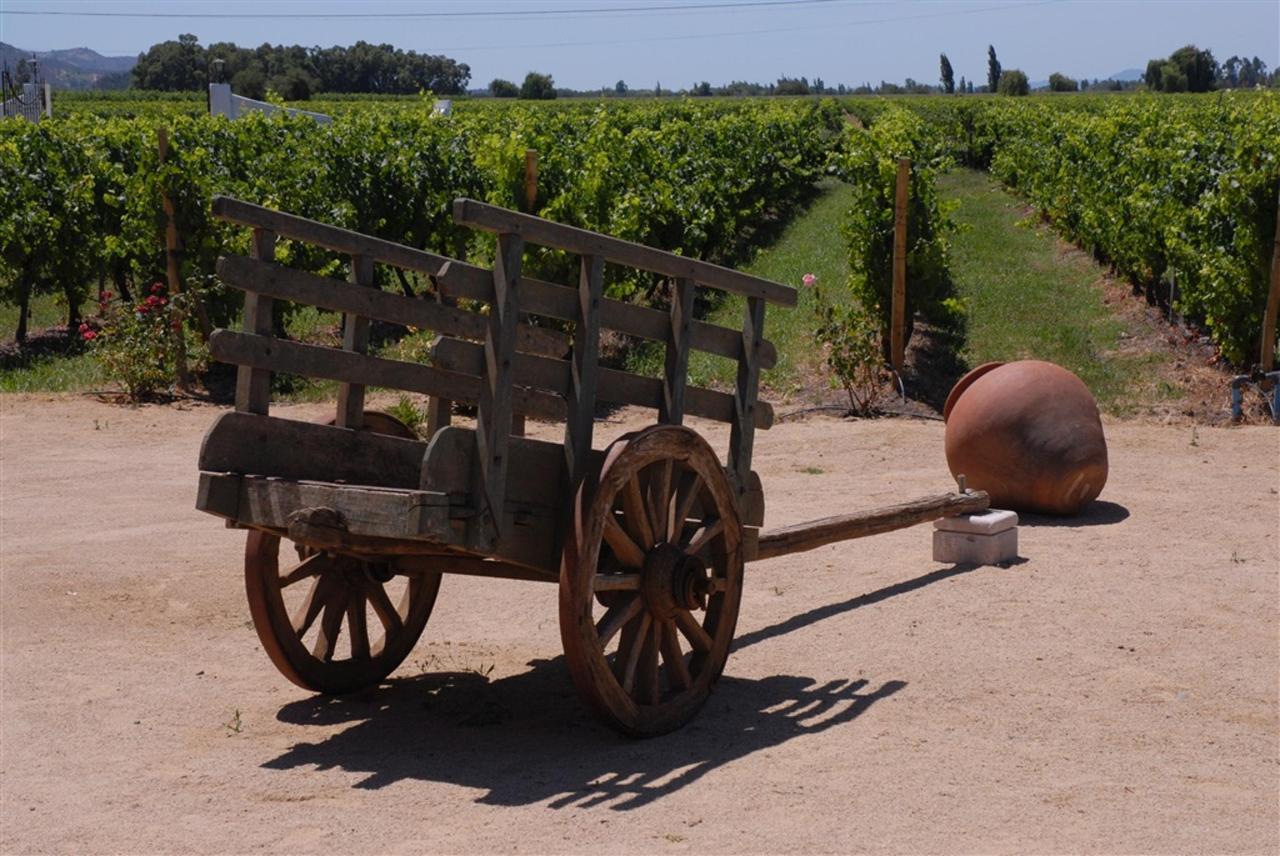 Landscape 11 - Terraviña.jpg