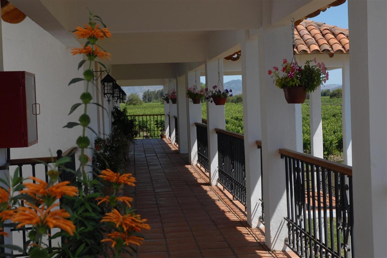 Landscape 13 - Terraviña.jpg