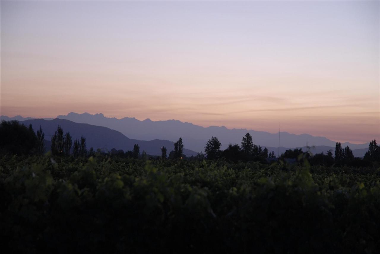 Landscape 17 - Terraviña.jpg
