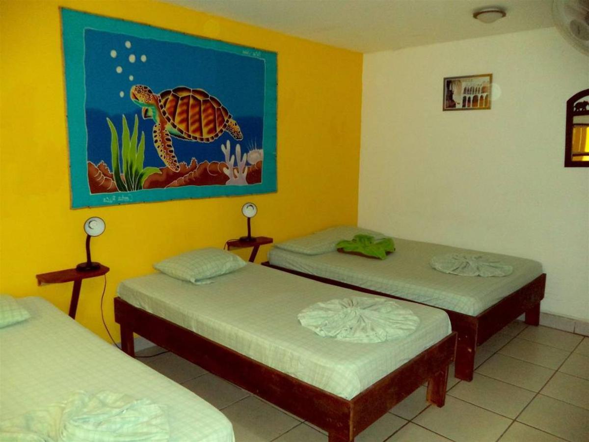 Habitacion - Hotel Aurora - Montezuma.jpg